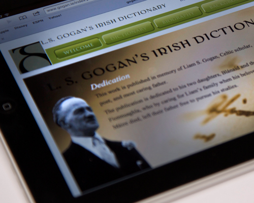 L. S. Gogan's Irish Dictionary